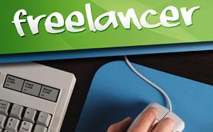 Freelancer portfolio plugins